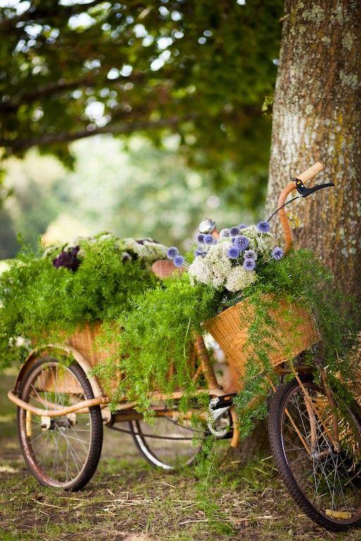 Bici antigua y flores